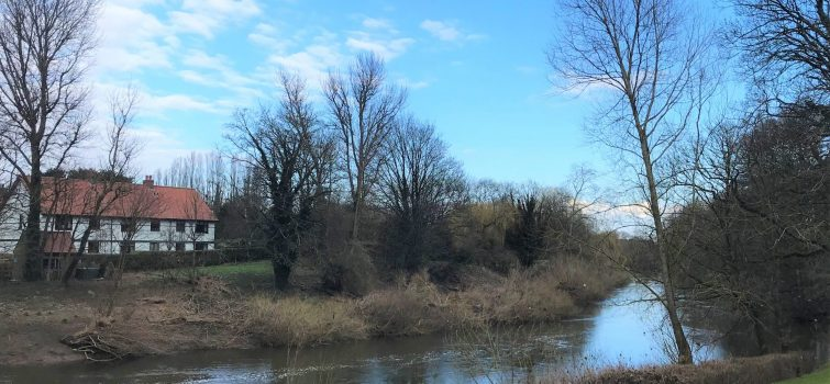 River Ure looking East